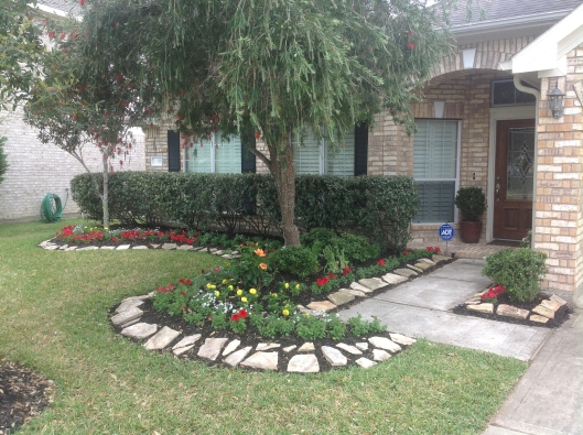 Front Yard After